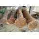 Belzona 1391 (Ceramic HT Metal) - доступная цена