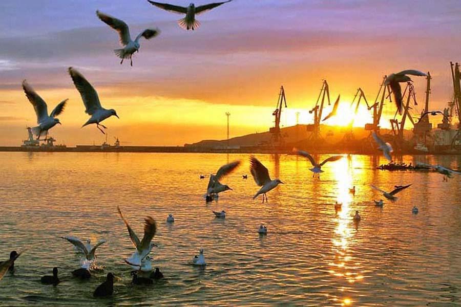 экология моря